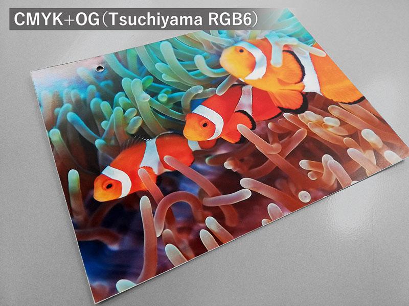 Tsuchiyama RGB6(6色印刷)